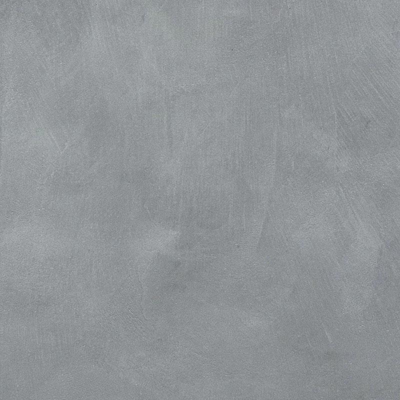 Chartreux - Gris